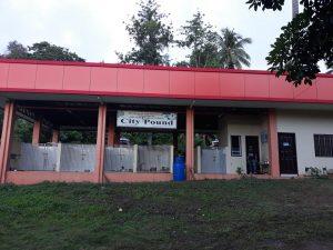 The New Location of Davao City Pound